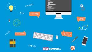 Web Designer Freelance, Siti Web Vasto, Web Design - Web Development