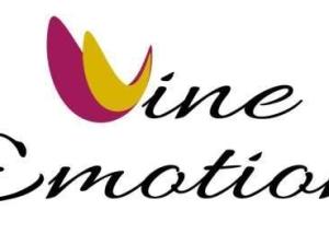 Web Designer Freelance, Siti Web Vasto, Web Design - Wine Emotion Logo Design