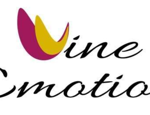 Wine Emotion Logo Design